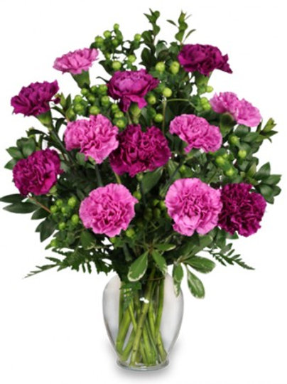 """Fuchsia Mix"" Carnation Bouquet"