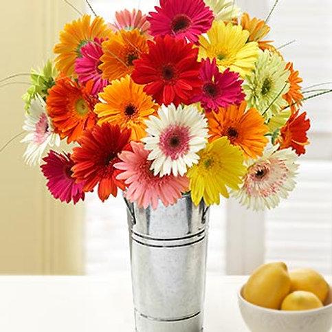 Multi-Daisy Bouquet