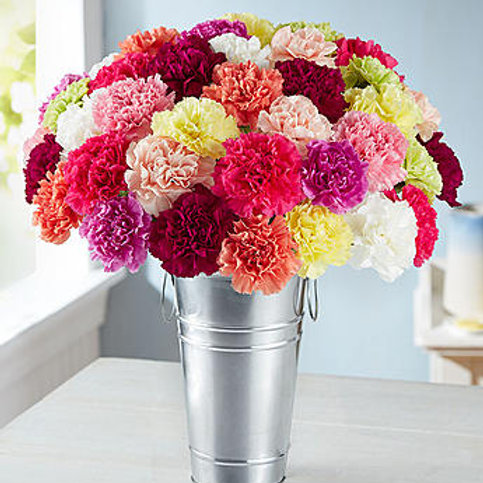 """Rainbow"" Carnation Bouquet"