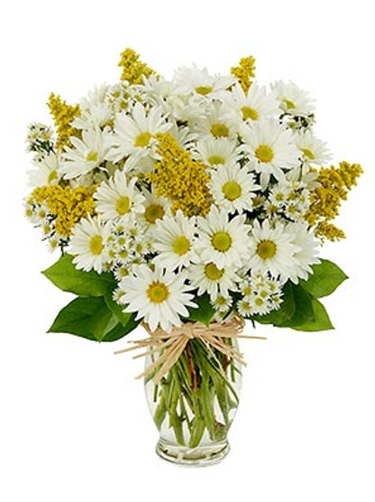 """Daisy Love"" Bouquet"