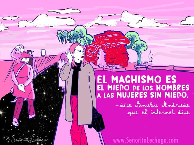 Dice Amalia Andrade que dice el internet que: El machismo es el miedo de los hombres a las mujeres s