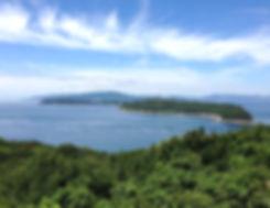 和歌山らしい海の幸山の幸