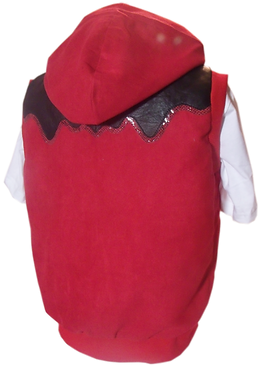 Blood of a king custom jacket