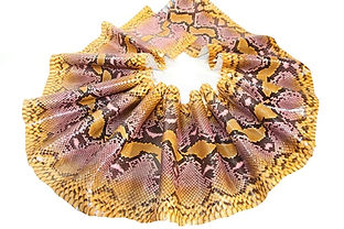 Handpainted Python Skin