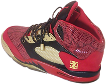 Blood of a king custom sneakers