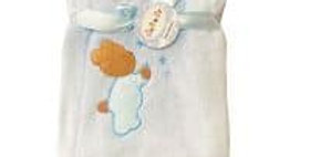 Cozy Teddy Plush Blanket