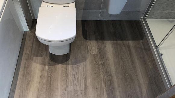 Toilet 29.01.19.JPG