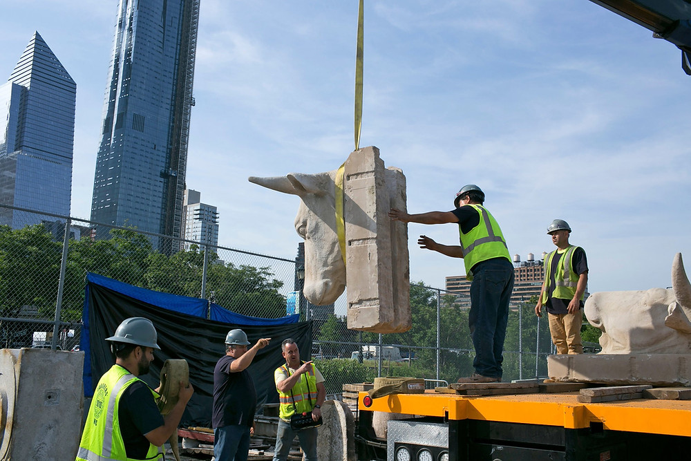 Transferring a nearly 100-year-old cow head to its new resting place – Chelsea Waterside Park