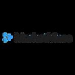 marketmuse logo white background.png