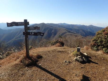 [公募プラン]奥高野・伯母子岳と和歌山県最高峰・龍神岳