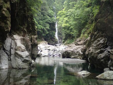 [公募プラン]秘境・大杉谷から大台ヶ原