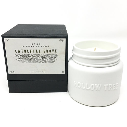 CATHEDRAL GROVE CANDLE | LIBRARY OF TREES SERIES | HOLLOW TREES