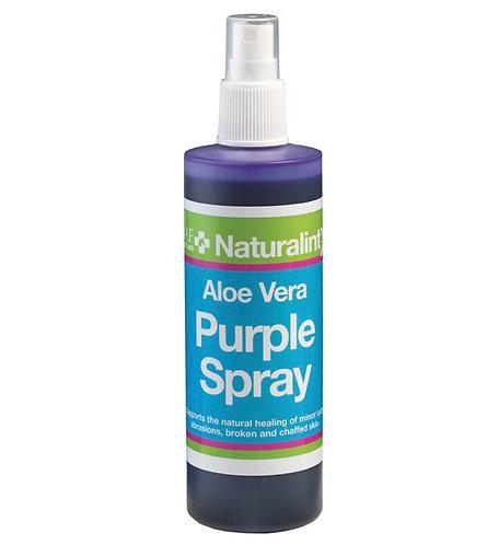 Aloe Vera Purple Spray 240ml