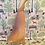Thumbnail: Light waxed duck