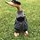 Thumbnail: Golfer Duck