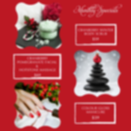 Nov_Dec Specials- IG.png