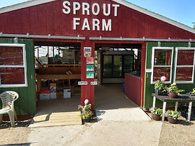 Sprout_farm_stand_June_2020[1].jpg