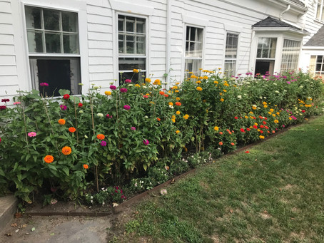 Post Labor Day leisureSprout Farm News Letter         www.sproutfarm.net  Sept 6, 2018  Hello Everyo