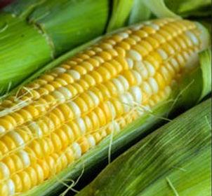 butter and sugar corn.jpg