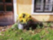 Ebnerhof II.jpg