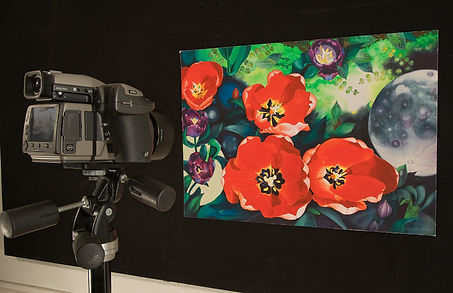 taking a photograph of artwork using a hasselblad camera