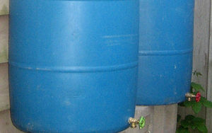 Rain Barrel-Crop.jpg