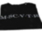 MSCVTR logo sweater