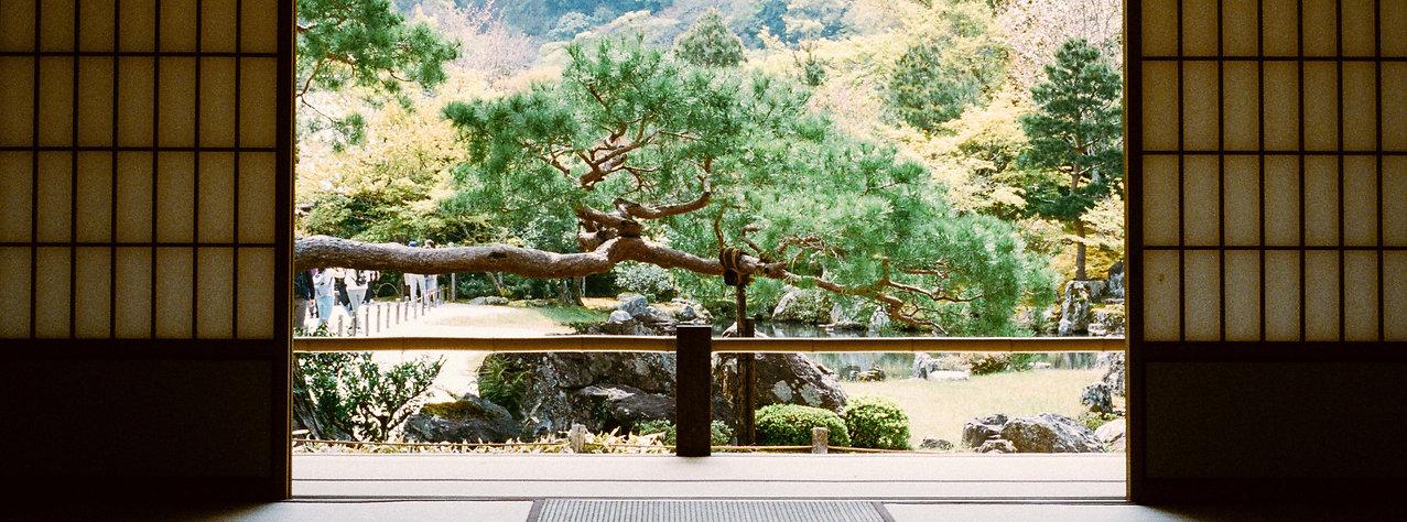 japon-65.jpg