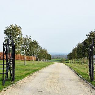Driveway through a Country Estate.jpg