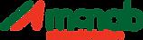 McNab Logo.png