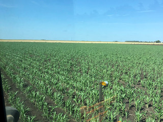 Putting the Garford Robocrop Side Shift System to the Test