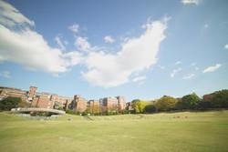 県立大学近くの芝生広場