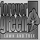 forever green bw .png