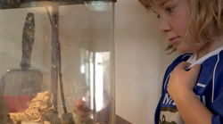 Student observing the classroom pet