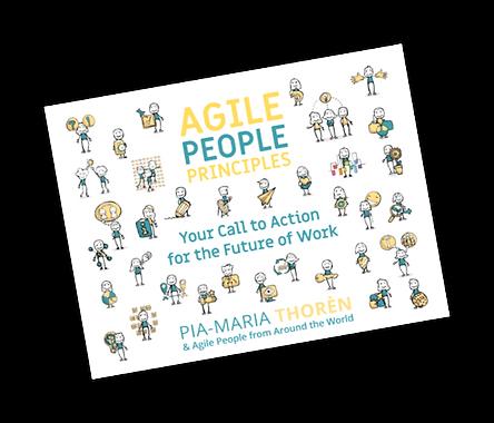 agile people principles kitap kapak.png