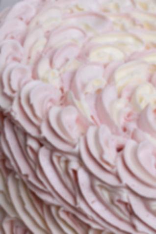 Strawberry and Cream Cake Close Up