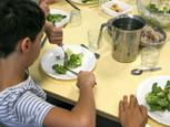 Dans la presse : Menus végétariens obligatoires : des cantines scolaires dans les choux - Libération