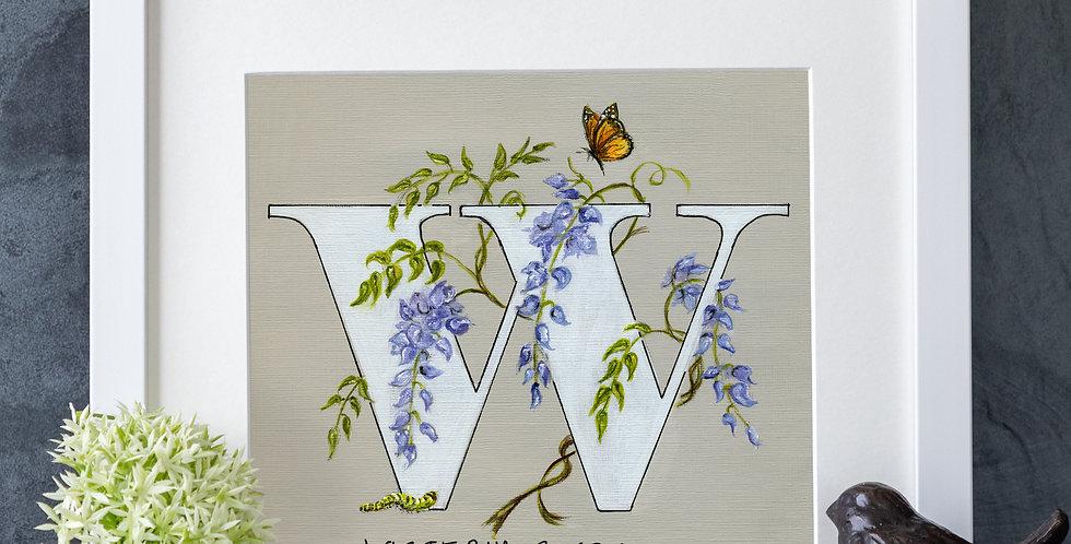 W (Wisteria)