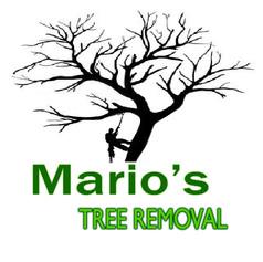marios logo Tree REMOVAL3.jpg