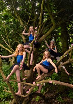 Tree fairies!