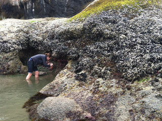 Lizzy in the Tide Pool