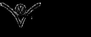 Vintage Kombi Promotions Logo