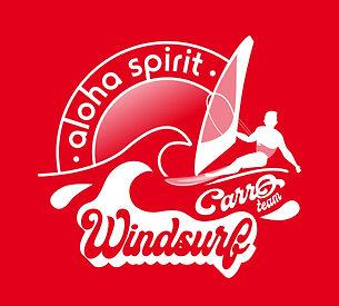 Sticker 385 X 355 mm_Windsurf Carro Team