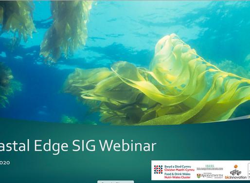 Future Foods Insight Series - Coastal Edge covering Algae, Seaweed and all things coastal