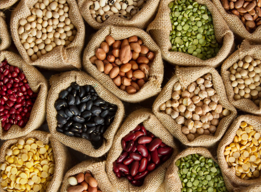 Future Foods Insight Series - Protein: Trends, Opportunities and Innovation