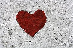carna heart.jpg