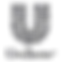 unilever_logo_Grey.png