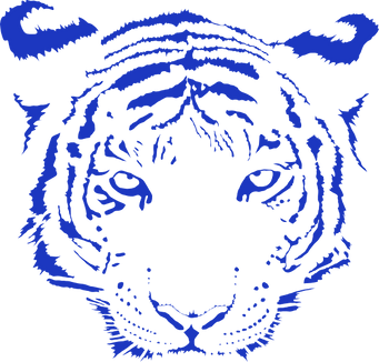 blue-tiger-hi_edited_edited_edited.png