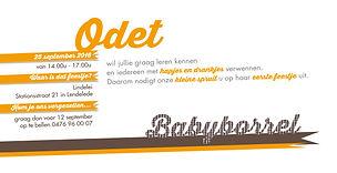 Odet_208x105.jpg