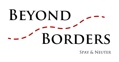 beyond borders.PNG